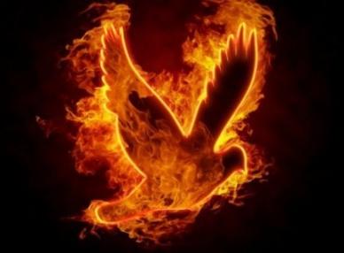 Holy Fire Peru